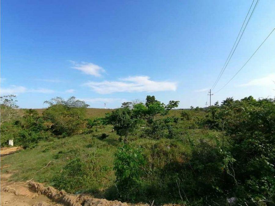 vendo terrenos en hato nuevo manoguayavo 10070 mts