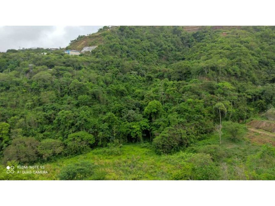 bosques de la lagunita con hermosa vista